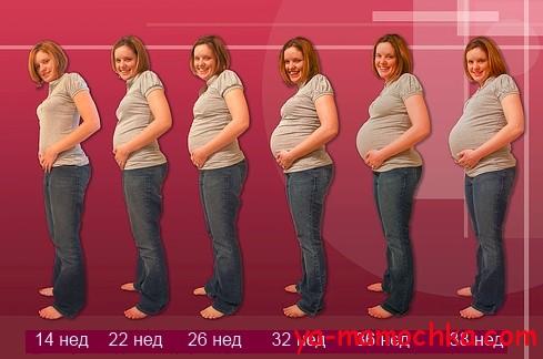 Развитие ребенка в фото беременности