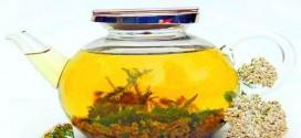 Народные средства и методы борьбы с токсикозом — отвары и настои
