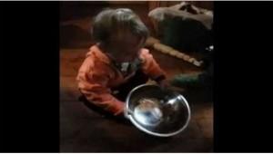 Миска для детей - это игрушка!