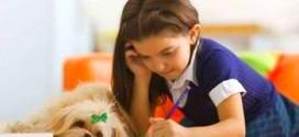Пишем правильно: учимся писать буквы, держать ручку и следим за осанкой