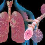 Особенности диагностики заболеваний органов дыхания у детей
